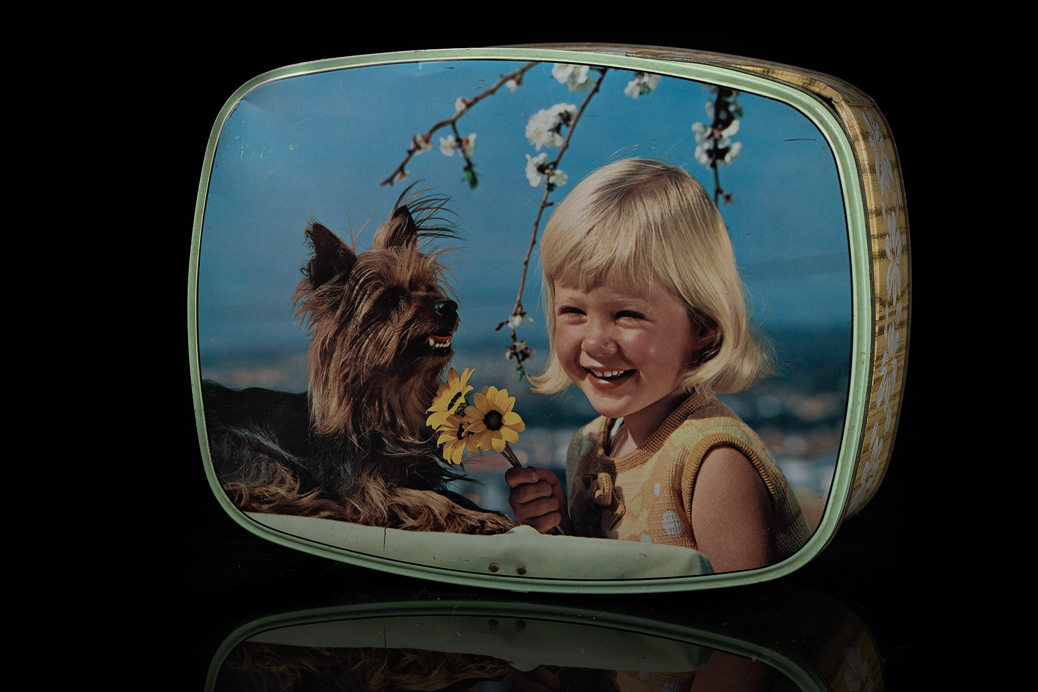 Vintage-tin-dog-box12